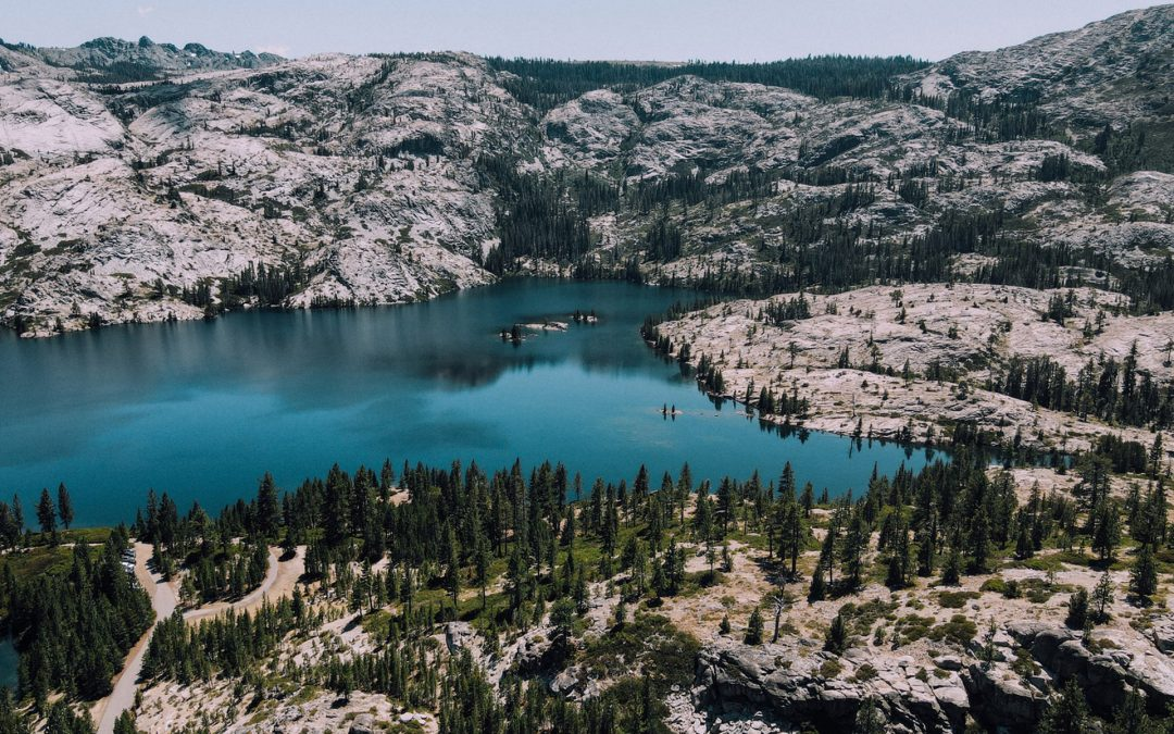 Quid Pro Quo in the Wilderness of the Western States